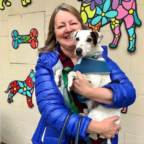 Dog adopted at DACC animal care center during a cold day